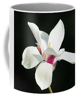 Becoming Coffee Mug by Cathy Donohoue