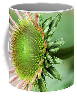 Becoming Echinacea - Coffee Mug