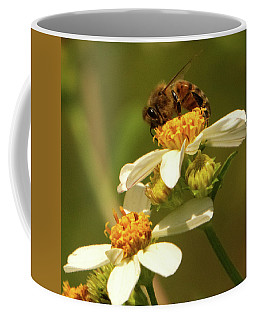 Bee Among Daisies Coffee Mug