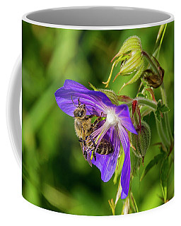 Bee At Work Coffee Mug by Ulrich Burkhalter