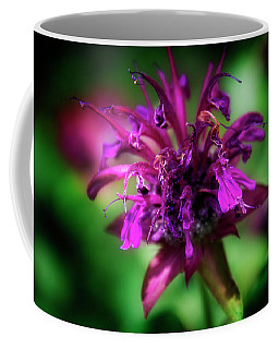 Bee Balm Beauty Coffee Mug