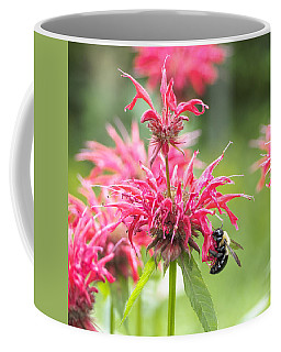 Bee Balm II Square Coffee Mug by Marianne Campolongo