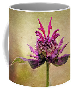 Bee Balm With A Vintage Touch Coffee Mug