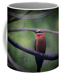 Bee-eater Coffee Mug