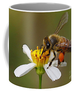 Bee Gathering Pollen Coffee Mug by Myrna Bradshaw