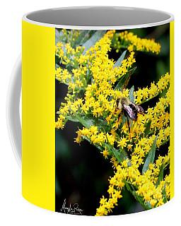 Bee In The Rawweed Coffee Mug