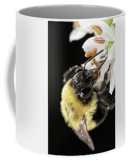 Coffee Mug featuring the photograph Bee Macro 1 by Brian Hale