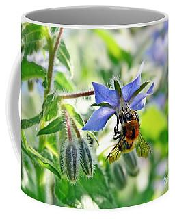 Bee On Borage Coffee Mug