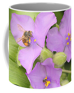 Bee On Purple Spiderwort Coffee Mug by Sheila Brown