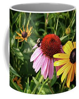 Bee On The Cone Flower Coffee Mug