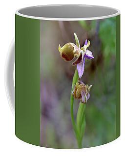 Bee Orchid Coffee Mug