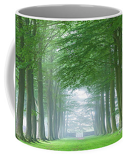 Beech Tree Avenue Coffee Mug