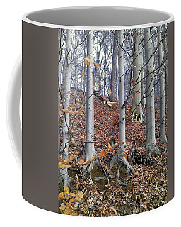 Coffee Mug featuring the photograph Beech Trees by Melinda Blackman