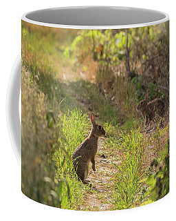 Been Spotted Coffee Mug