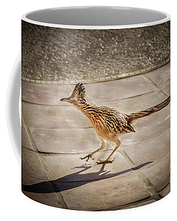 Greater Roadrunner Photographs Coffee Mugs