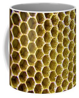 Bee's Home Coffee Mug