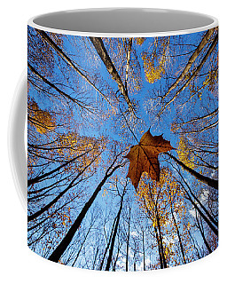 Coffee Mug featuring the photograph Before The First Snow by Mircea Costina Photography