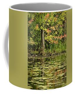 Coffee Mug featuring the photograph Beginning Of Autumn by Cheryl Baxter