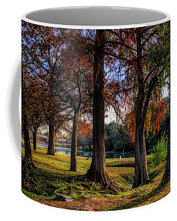 Beginning Of Fall In Texas Coffee Mug