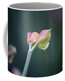 Beginning Coffee Mug by Sheila Ping