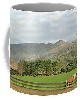 Behind The Dillard House Restaurant Coffee Mug