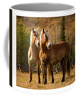 Coffee Mug featuring the photograph Belgian Draft Horses by Sharon Jones