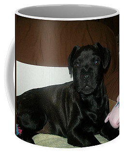 Bella Coffee Mug by Jewel Hengen
