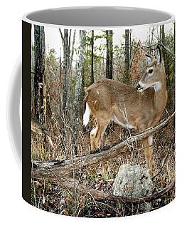 Beloved Tzav Coffee Mug by Bill Stephens