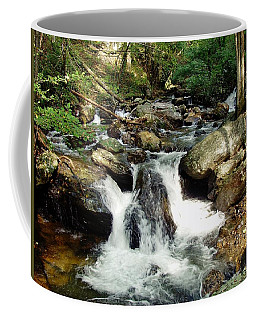 Below Anna Ruby Falls Coffee Mug