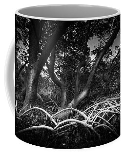 Below The Canopy Coffee Mug