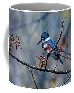 Belted Kingfisher Perch Coffee Mug