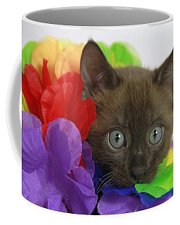 Bengal Colors Coffee Mug by Shoal Hollingsworth