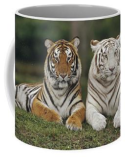 Bengal Tiger Team Coffee Mug