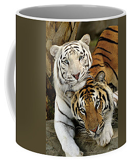 Bengal Tigers At Play Coffee Mug
