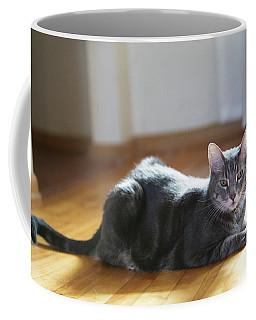 Bennu 21a Coffee Mug