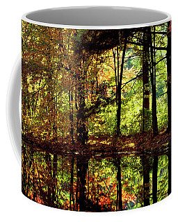 Bernharts Dam Fall 006 Coffee Mug