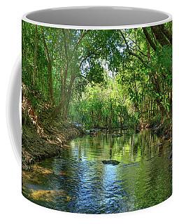 Berry Springs Coffee Mug