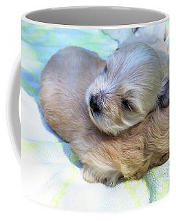 Best Buddies Coffee Mug
