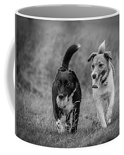 Coffee Mug featuring the photograph Best Buddies by Nick Bywater