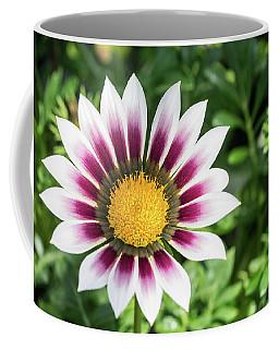 Best Face Forward Coffee Mug by Cathy Donohoue