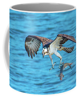 Best Osprey With Fish In One Talon Coffee Mug