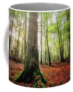 Between The Light And The Shadows Coffee Mug
