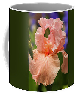 Beverly Sills Iris, 2 Coffee Mug