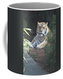Coffee Mug featuring the photograph Beyond The Branches by Laddie Halupa