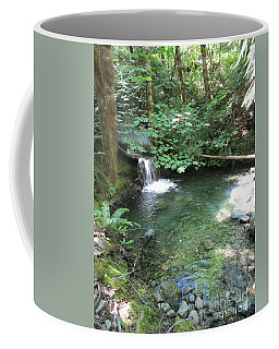 Coffee Mug featuring the photograph Beyond The End Of The Trail At Limpy Creek by Marie Neder