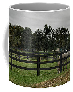 1004 - Beyond The Fence White Horse Coffee Mug