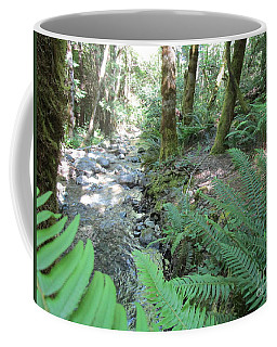 Coffee Mug featuring the photograph Beyond The Ferns by Marie Neder