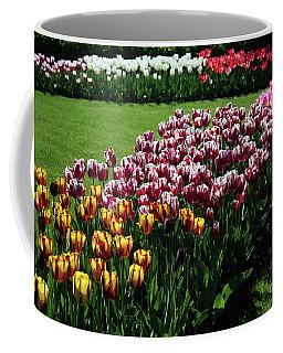 Multicolor Tulips Coffee Mug
