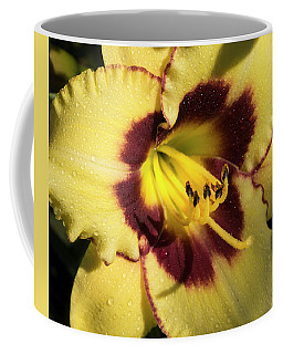 Coffee Mug featuring the photograph Bicolored Lily by Jean Noren