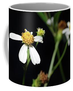 Coffee Mug featuring the photograph Bidens Alba by Richard Rizzo
